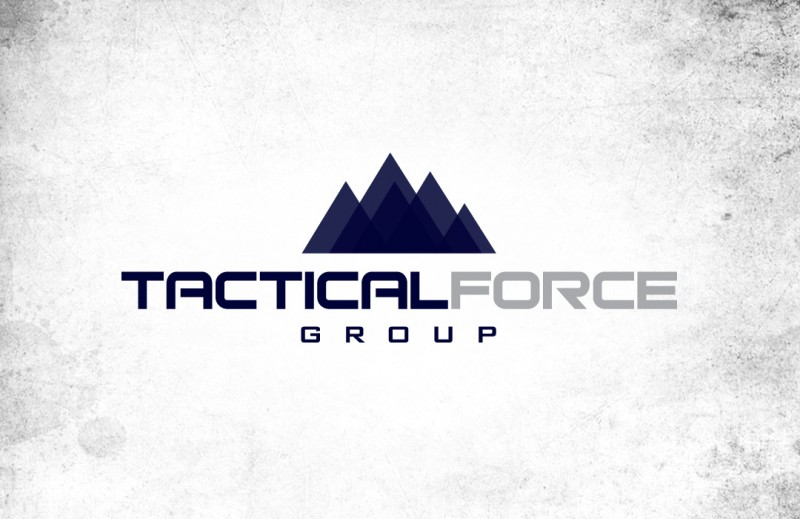 Tactical Force Group Logo Design | Website Design